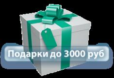 Подарки до 3000 руб