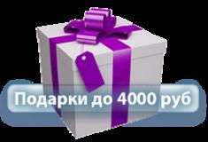 Подарки до 4000 руб