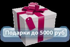 Подарки до 5000 руб