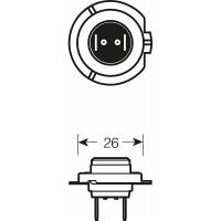 Галогенная лампа AVS Vegas 12V 55 W H7 (1 шт)