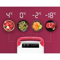 Переносной автохолодильник Indel B TB28BTH DT - управление